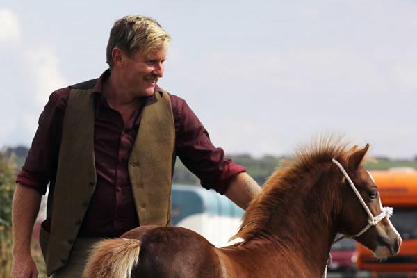 Sioe Llandysul 2017 - pony