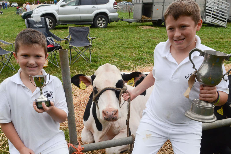 Proud of their success are Osian Maskell and brother Hedd of Talog winning with their Holstine heifer, and Osian also won the Best Handler11-16 years of age Pic Tim Jones